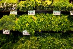 Herbage, anyone?